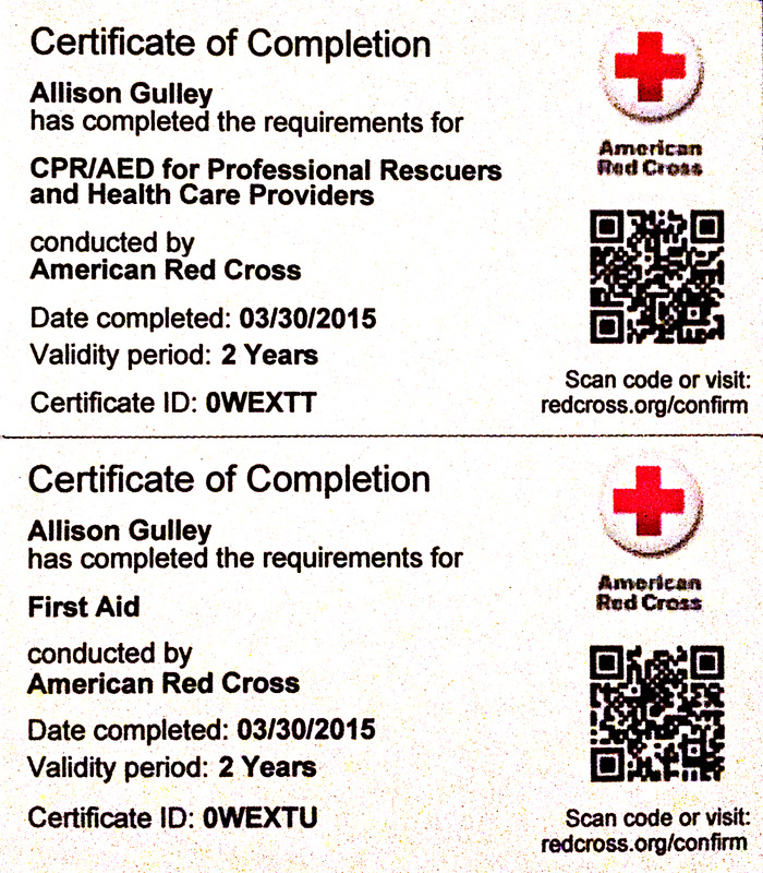 Accomplishments Memberships And Certifications Allison Gulleys